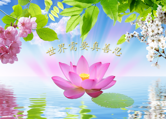 Falun Dafa,Falun Gong,Falun,Dafa,Gong